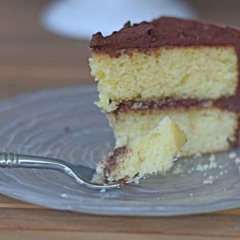 Two Layer Yellow Cake