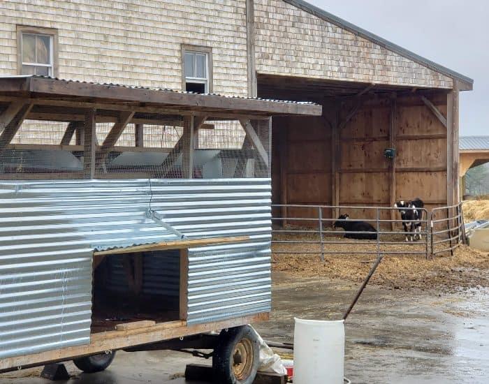 Wolfes Neck Center chicken trailer