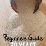 beginners guide to yeast