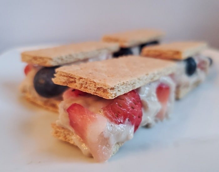 fruit ice cream sandwiches