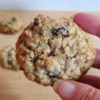 Holding a spiced oatmeal cranberry cookie close up